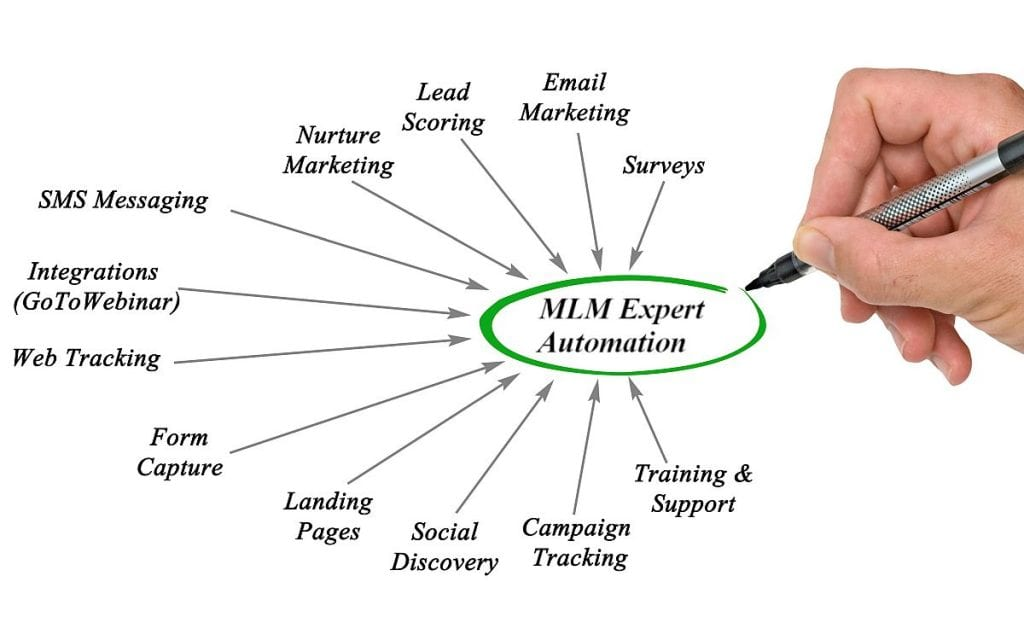 MLM Automation Expert